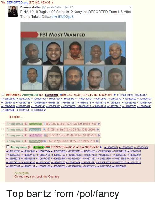 file-deported-pn-275-kb-583x391-pamela-geller-pamelageller-jan-13210972.png